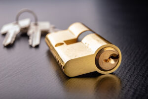 Le cylindre appelé également barillet ou canon est la pièce dans laquelle vous insérez votre clé pour ouvrir la porte.
